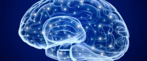 La fisioterapia y el ICTUS